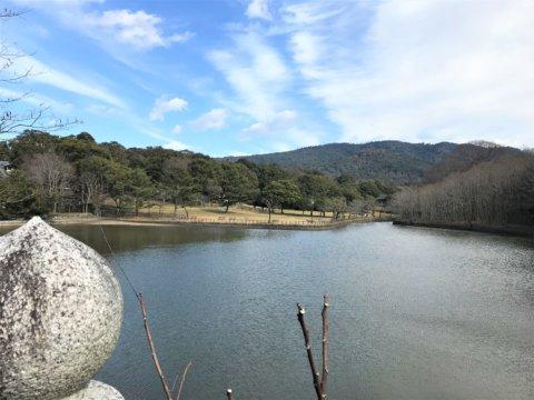 Araike Pond