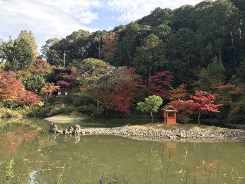 Joruri-ji three story pagoda